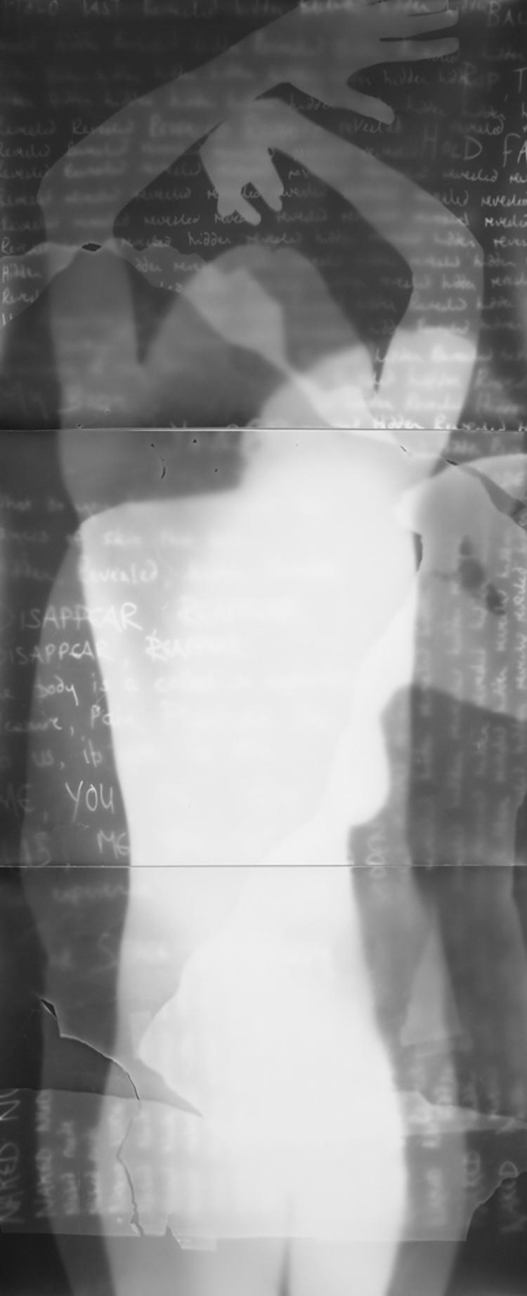 Disappear (Photogram I)